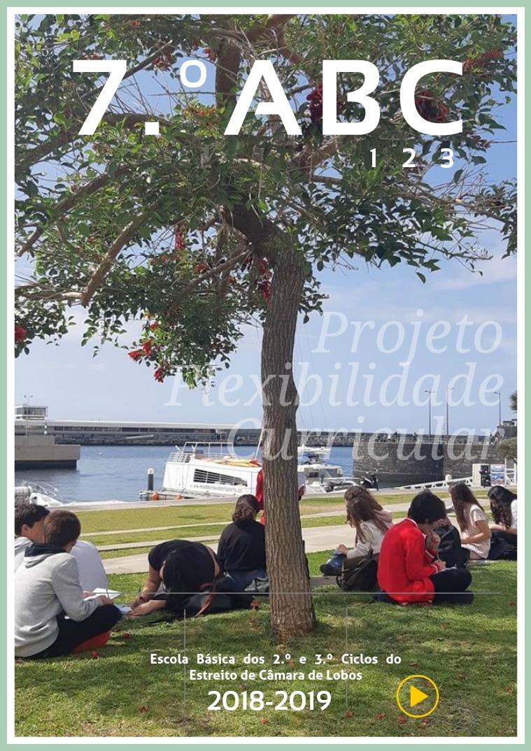Projetos 7ABC Projetos, Trabalhos, disciplinas