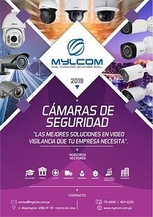 SOLUCIONES Y TECNOLOGÍA EN CÁMARAS DE VIDEOSEGURIDAD