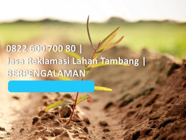 0822 600 700 80, Jasa Reklamasi Lahan Tambang, BER