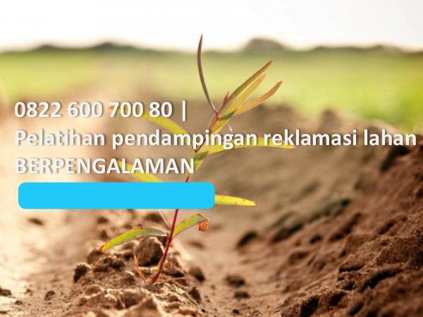 0822 600 700 80, pelatihan pendampingan reklamasi