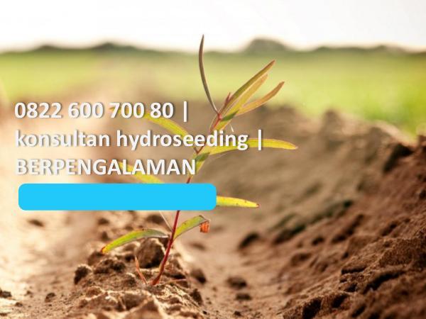 0822 600 700 80, konsultan hydroseeding, BERPENGAL