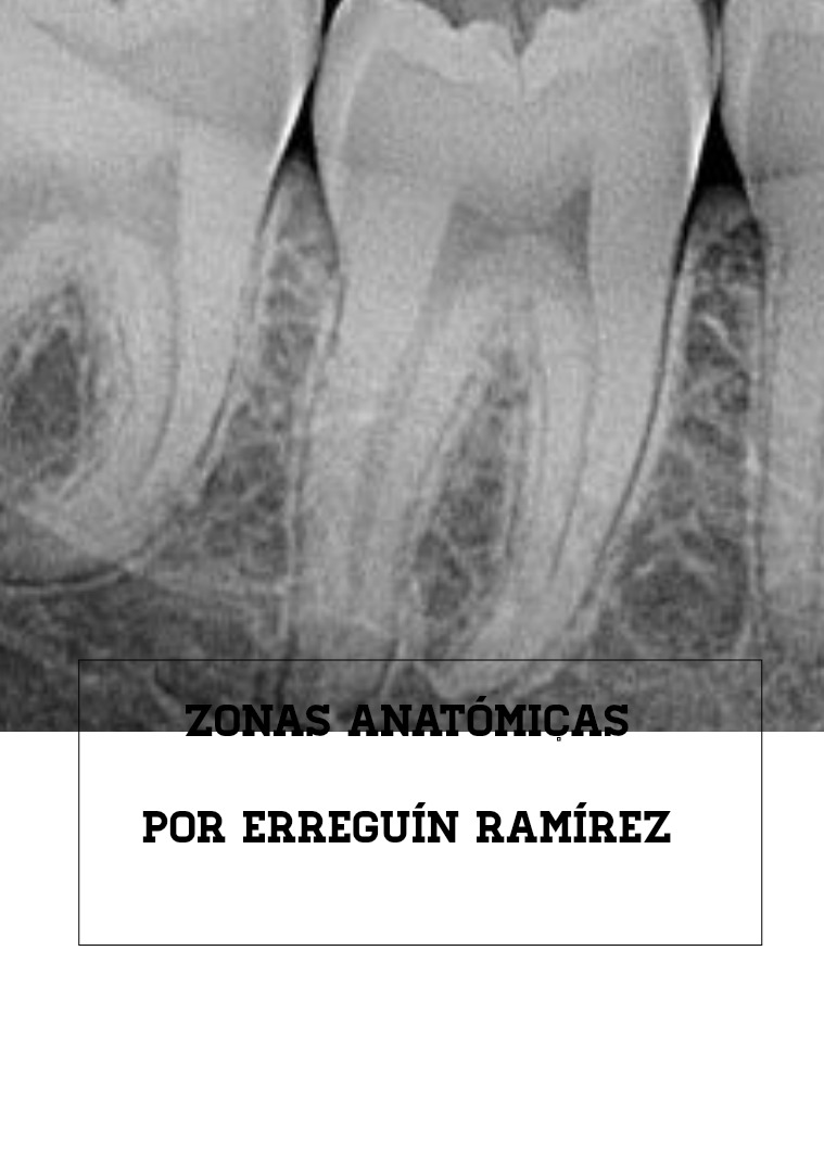 ZONAS ANATÓMICAS Odontológica