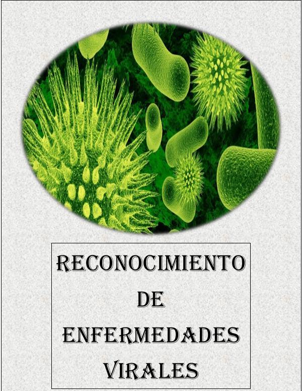 RECONOCIMIENTO DE ENFERMEDADES VIRALES VIROLOGIA (1)