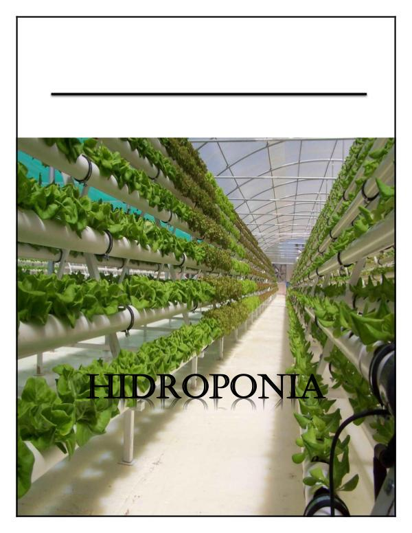hidroponea REVISTA_DE_LA_HIDROPONIA[1]
