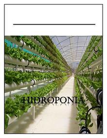 hidroponea