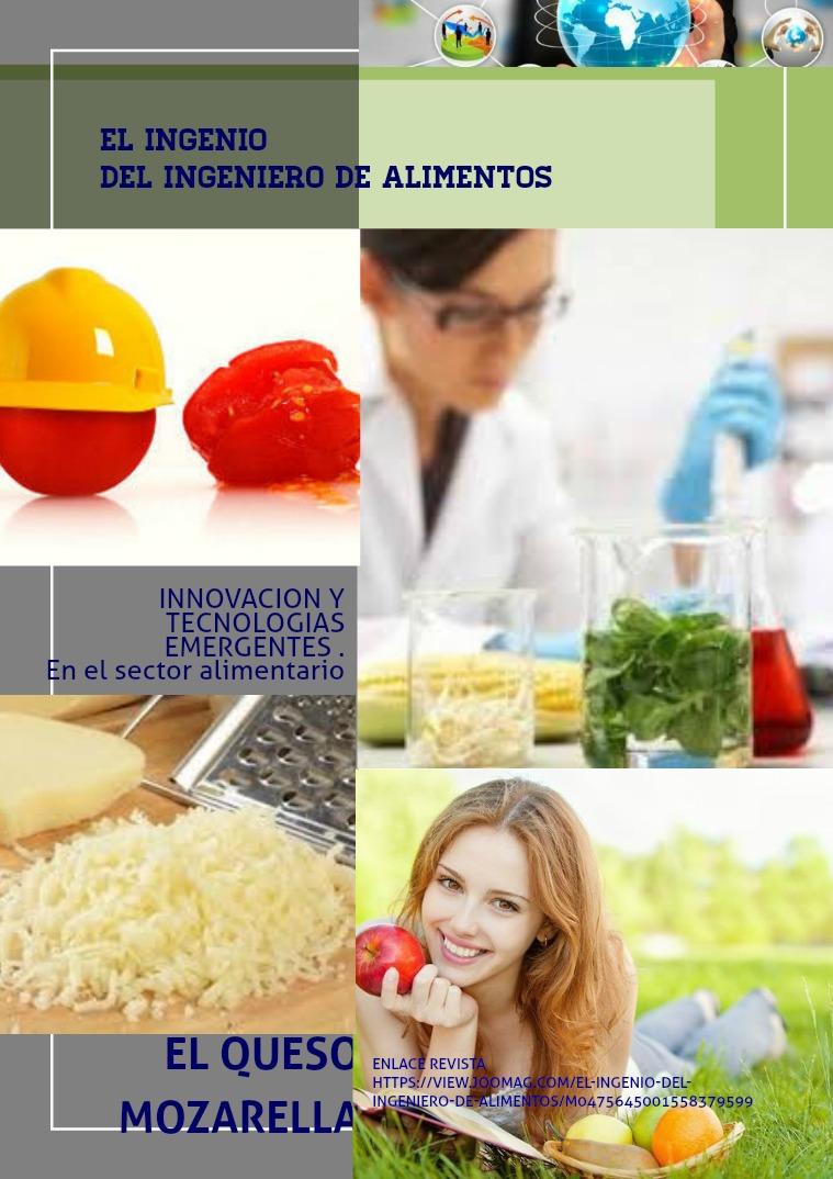 EL INGENIO DEL INGENIERO DE ALIMENTOS Primera Edicion