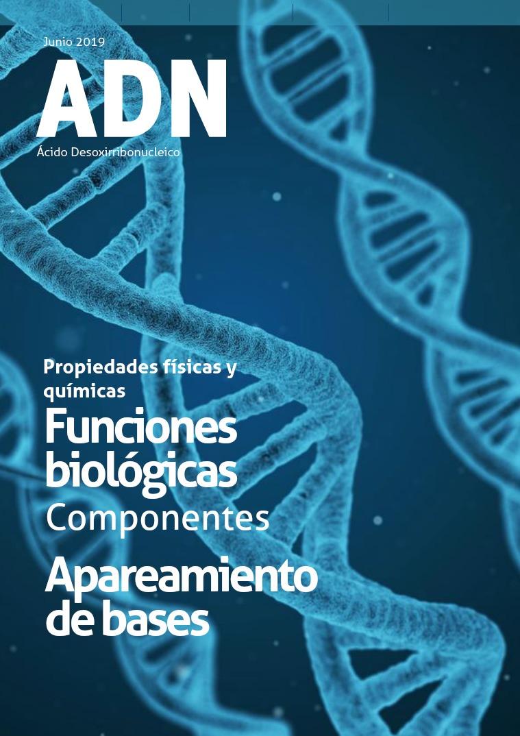 ADN Ácido Desoxirribonucleico