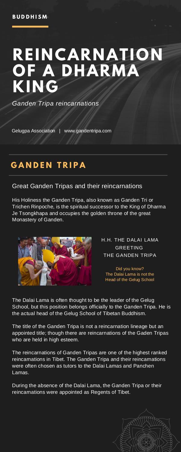 Reincarnation Of A Dharma King Ganden Tripa REINCARNATION-OF-A-DHARMA-KING-GANDEN-TRIPA