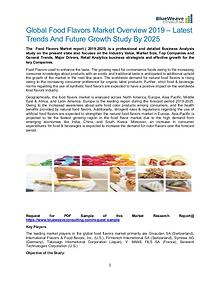 Global Food Flavors Market Overview 2019