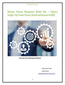 Global Business Process Management Market - 2019