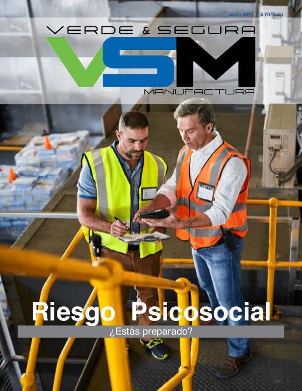 Edición 8. Septiembre 2019. Revista Verde & Segura Manufactura Edición 2. Junio 2017