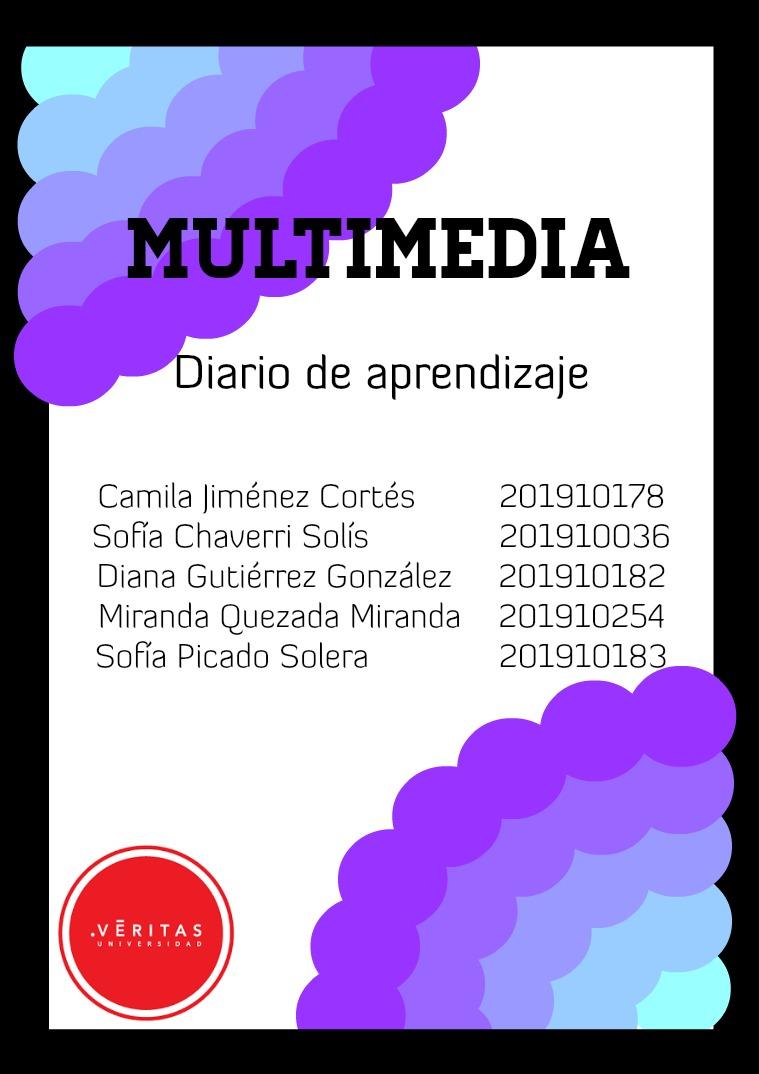 Diario de Aprendizaje, Multimedia 2(clone)