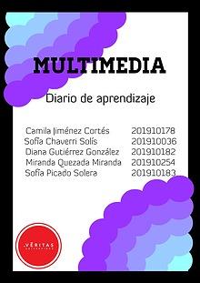 Diario de Aprendizaje, Multimedia
