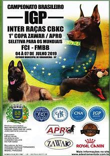 COPA ZAWAR / CAMPEONATO BRASILEIRO DE ADESTRAMENTO