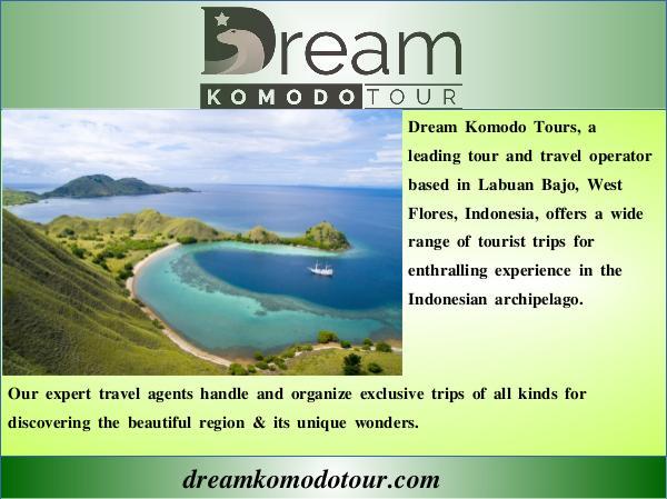 Komodo Tour Komodo island tour price