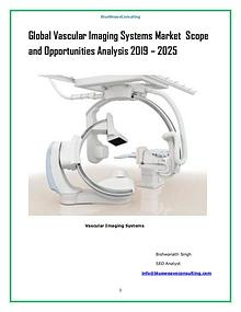 Global Vascular Imaging Systems Market 2019