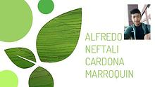 alfredo neftali cardona marroquin