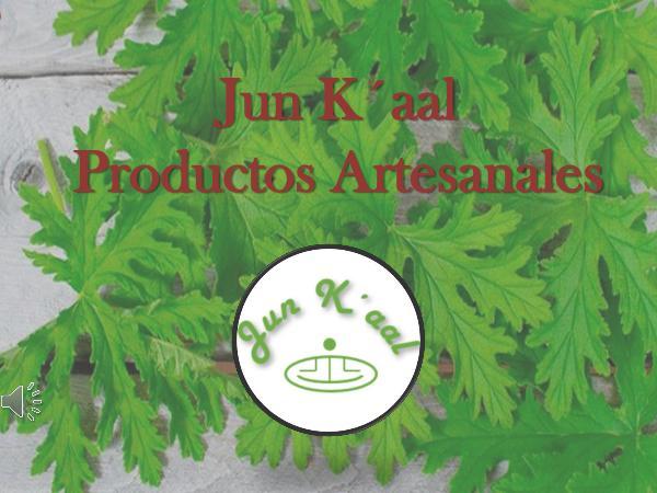 Mi primera publicacion Jun_K´aal_PRESENTACION_de_productos (1)