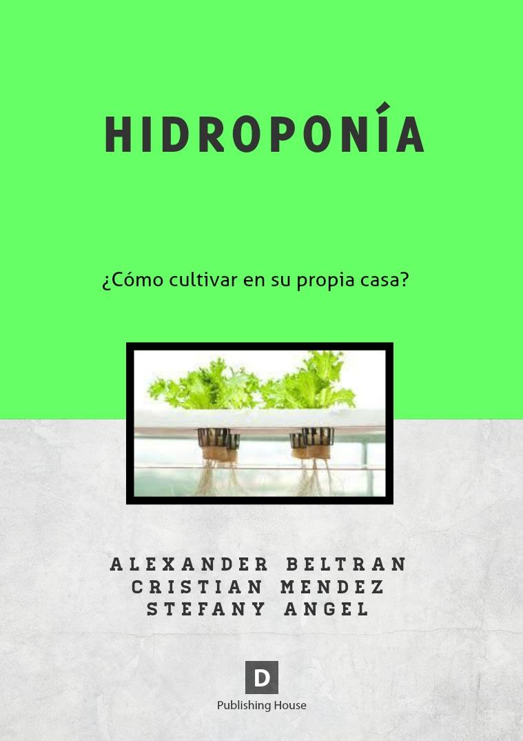 HIDROPONÍA 1