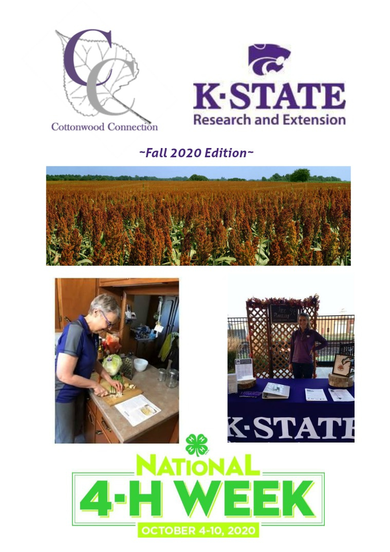 Cottonwood District Newsletter Fall2020 Newsletter