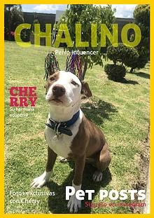 Chalino43s