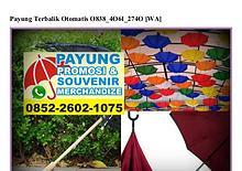 Payung Terbalik Otomatis O838 4O61 274O[wa]