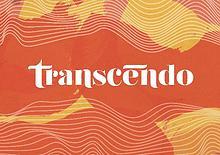Brandbook Transcendo