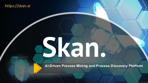 Skan Business Process Tenets Skan Business Process Tenets