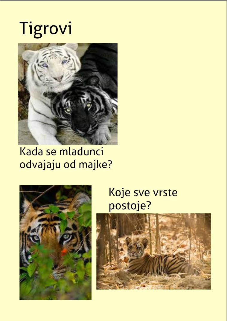 Tigrovi Tigrovi