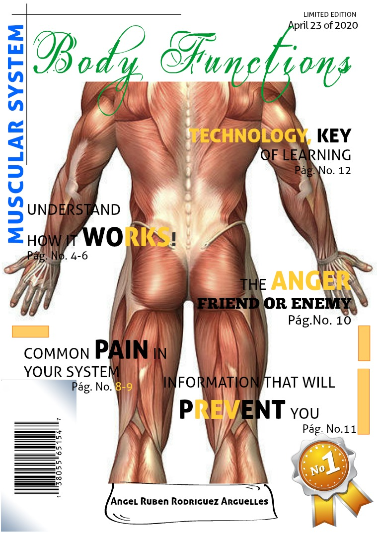 Muscular System Muscular System