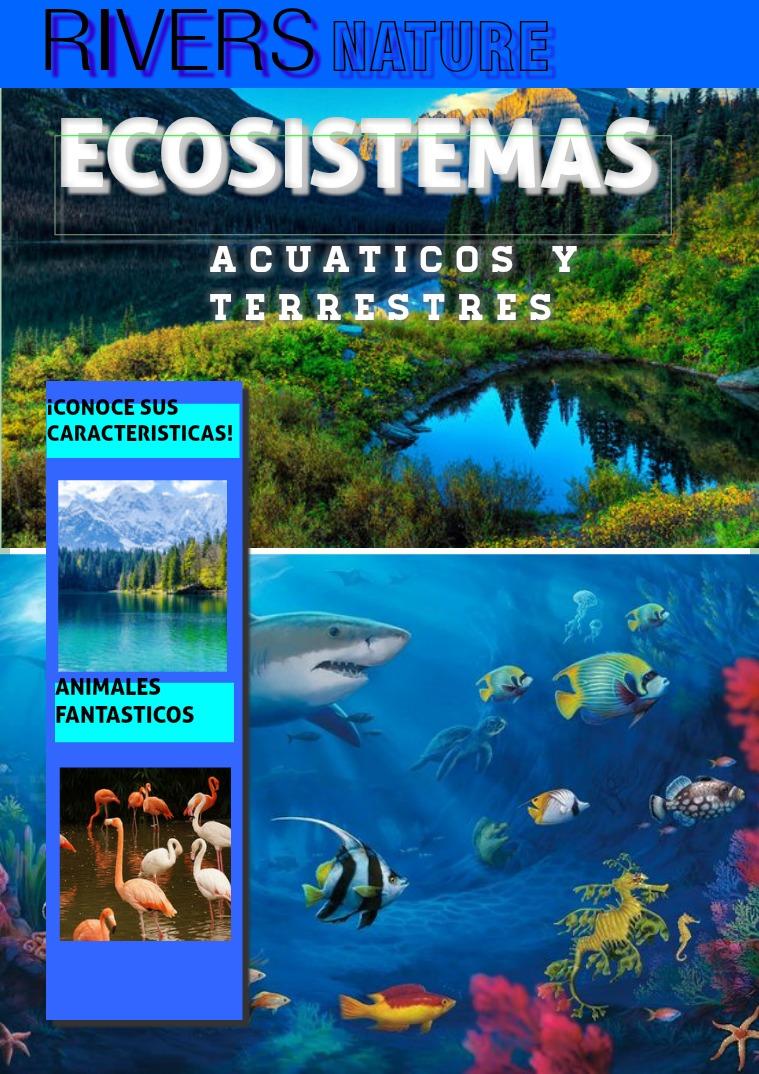 ECOSISTEMAS ACUACTICOS Y TERRESTRES ECOSISTEMA