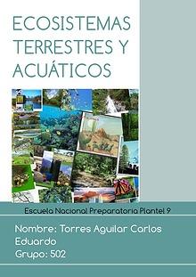 Actividad 8, Biología, Torres Aguilar Carlos Eduardo.