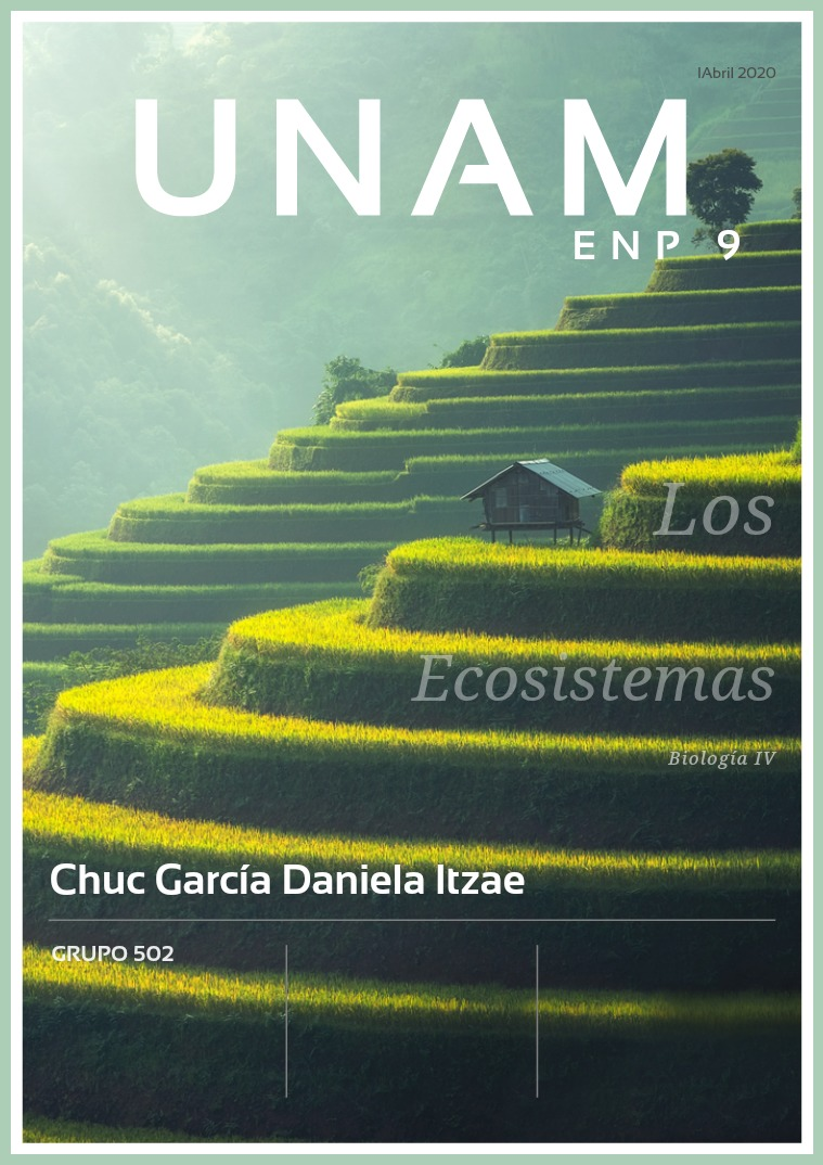 Revista tipos de ecosistemas 502 Chuc García Daniela Itzae Tipos de ecosistemas