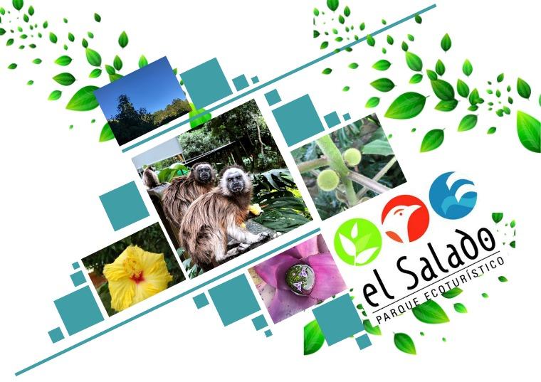 PARQUE ECOTURISTICO EL SALADO 1