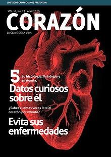 El corazón, la bomba de la vida