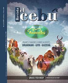 Revista El Cebú año 2020
