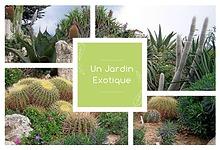 Catalogue 2020 - Un Jardin Exotique