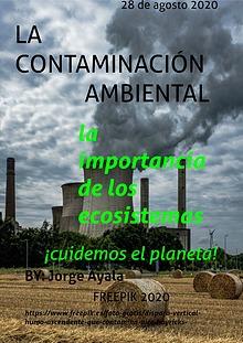 La Contaminación Ambiental.